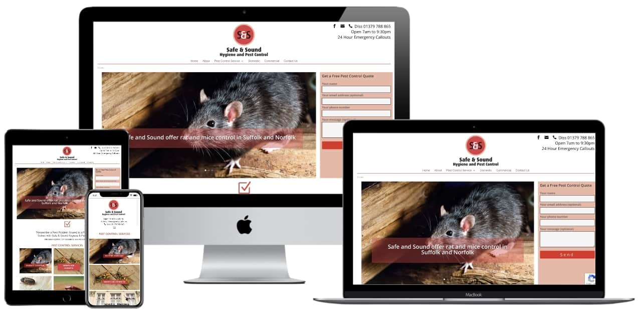 Website development project for Safe and Sound Pest Control
